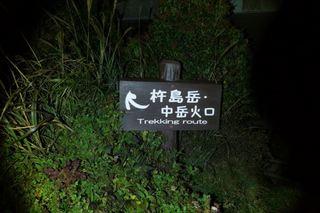 000013967013_R.JPG