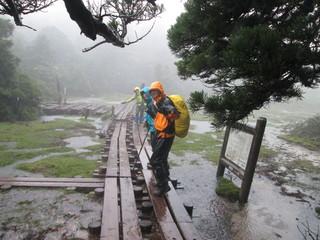 20130627〜30屋久島 057.JPG