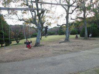 2014.11.16063_R.JPG